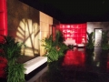 red, maple grid & green walls