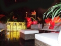 Tropical with seating & bar